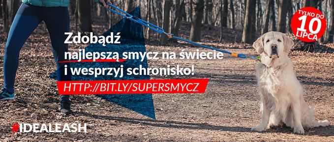 Głosuj na TOZ w Szczecinie!